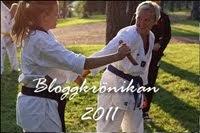 Bloggkrönikan 2011