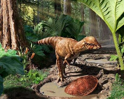 new-dinosaur-acrotholus-audeti