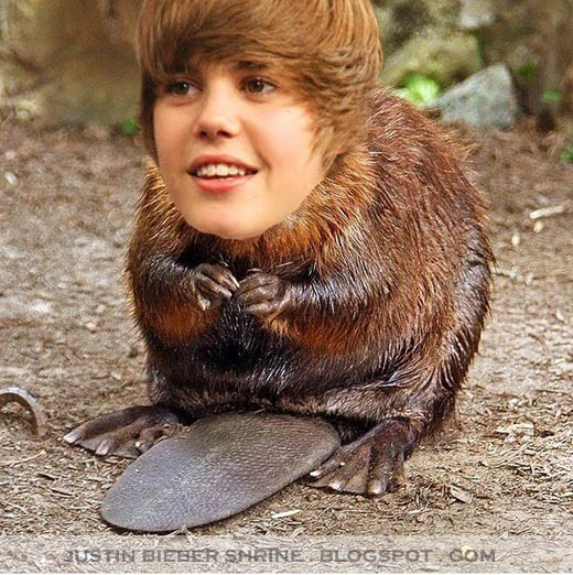 ¿Justin Bieber engañó a Selena Gómez?