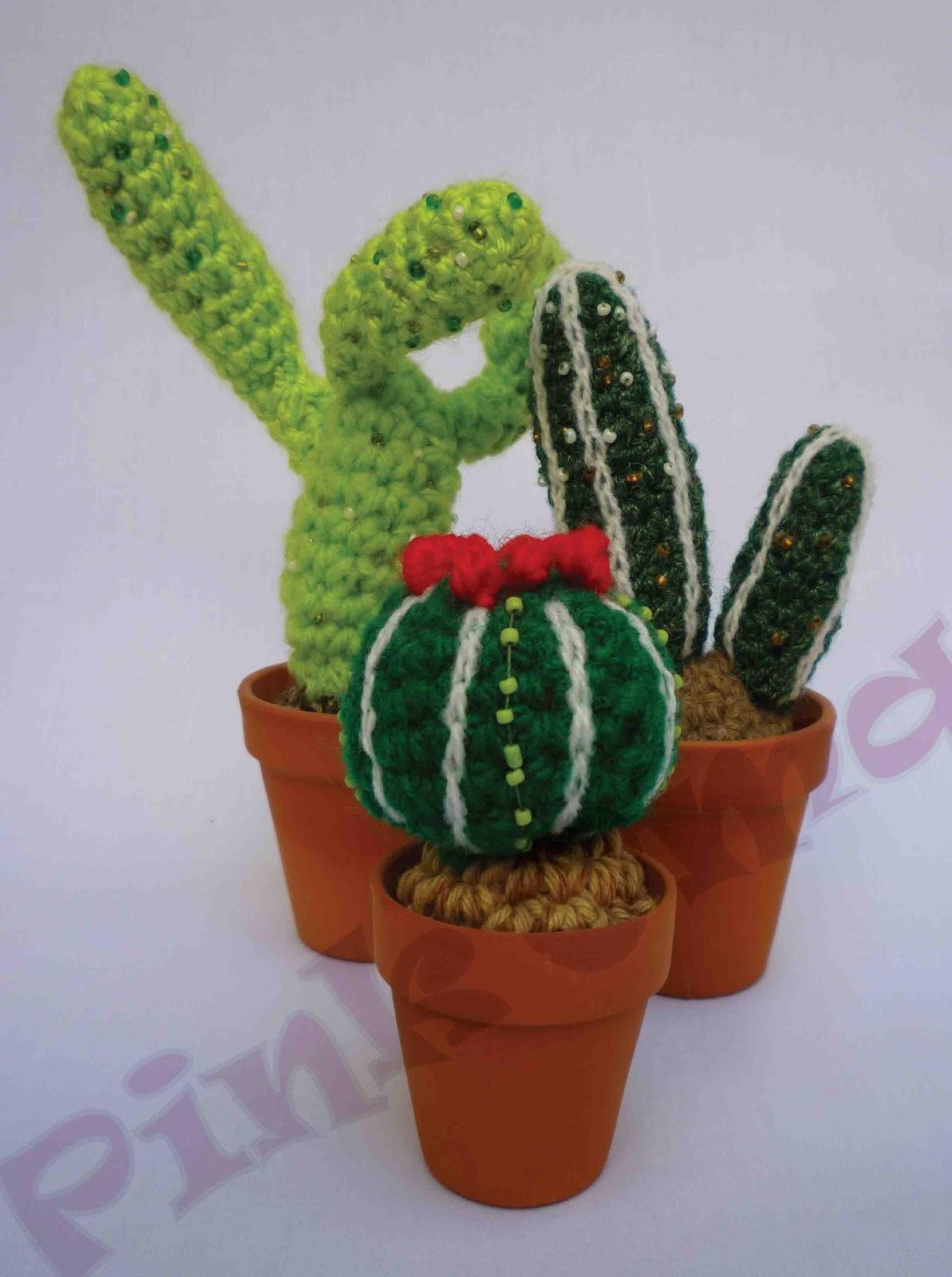 Pink oma cactus con maceta de terracota - Macetas de terracota ...