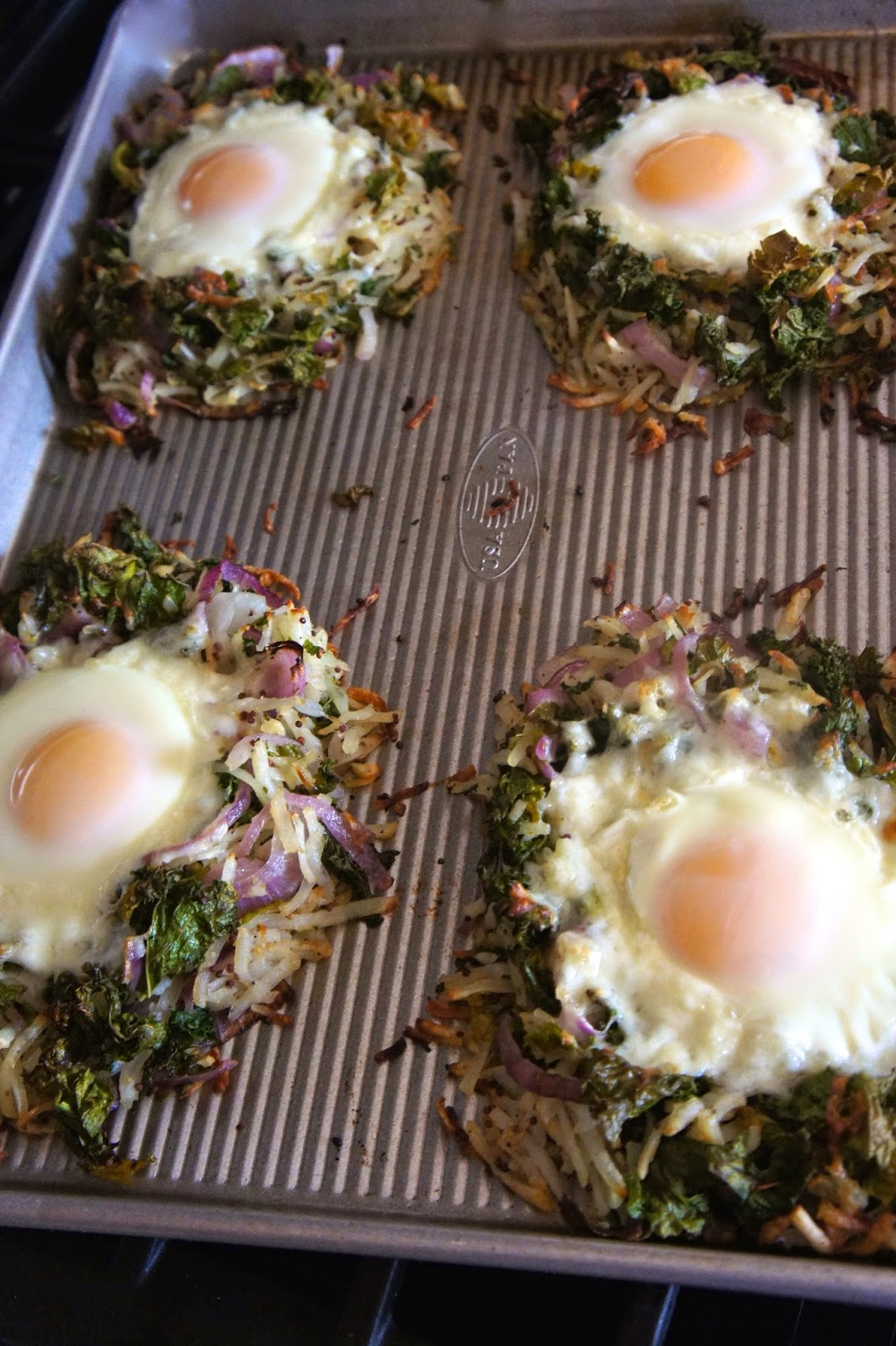 Bird Nests: Savory Sweet and Satisfying