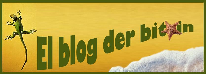 El blog der bitxin