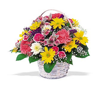 Sweet Flowers Pictures Collections
