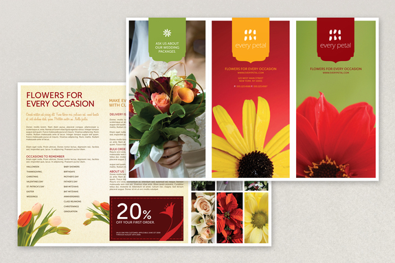 template for brochures - brochure samples pics brochure layout template