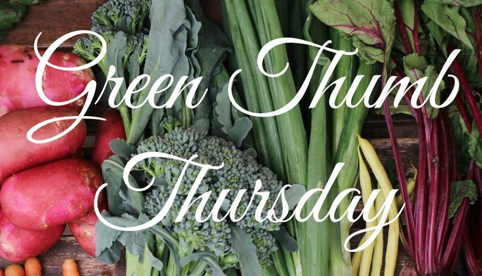Green Thumb Thursday blog hop