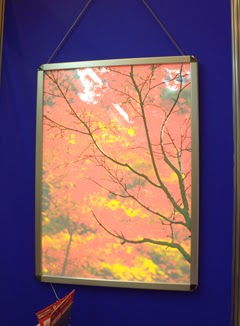 秋の紅葉の写真を飾ったチェンジングLEDライトパネルの写真