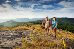 18 Reasons Asheville Is A Gateway For National Parks Centennial Adventures