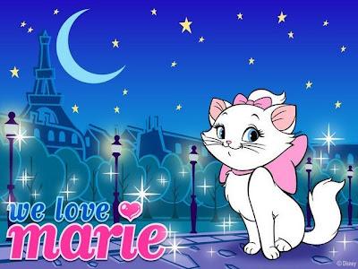 gatita Marie en la noche