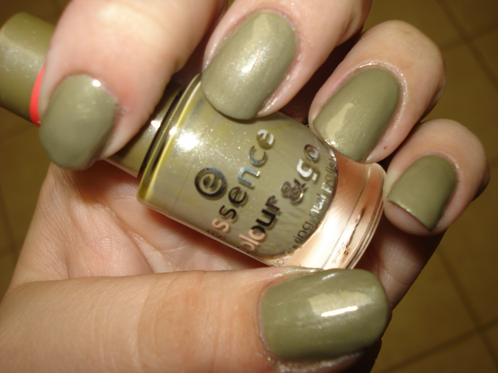 One Nail To Another: Essence color & go swatches and reviews