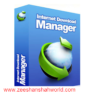 internet download manager free full version 6.11