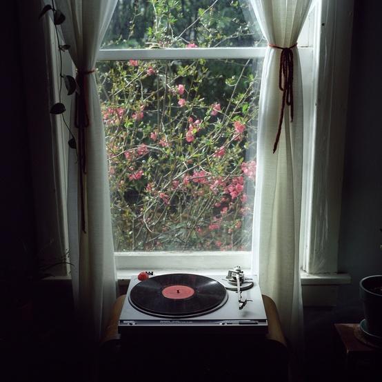 Moon to moon turntables for Vinyl windows portland