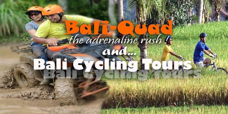 Bali Quad Menyenangkan