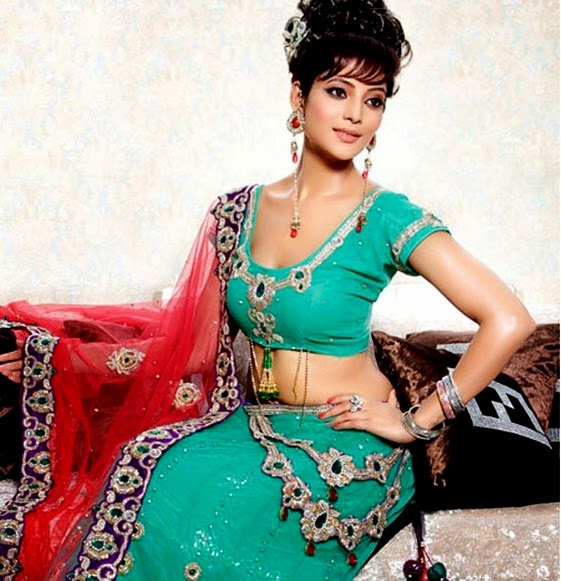 Best Sarees Fashion 2014 From India