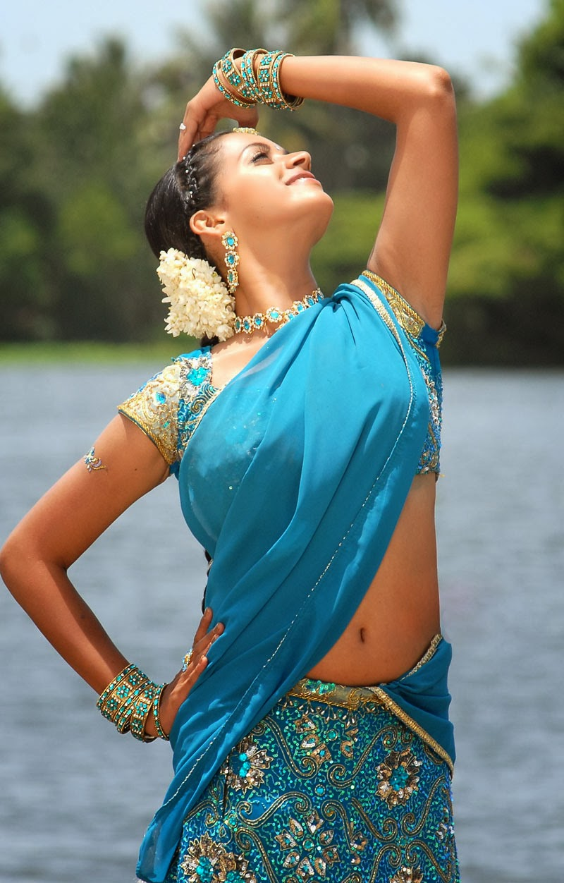 bhavana hot navel pics in blue saree mahatma movie stills