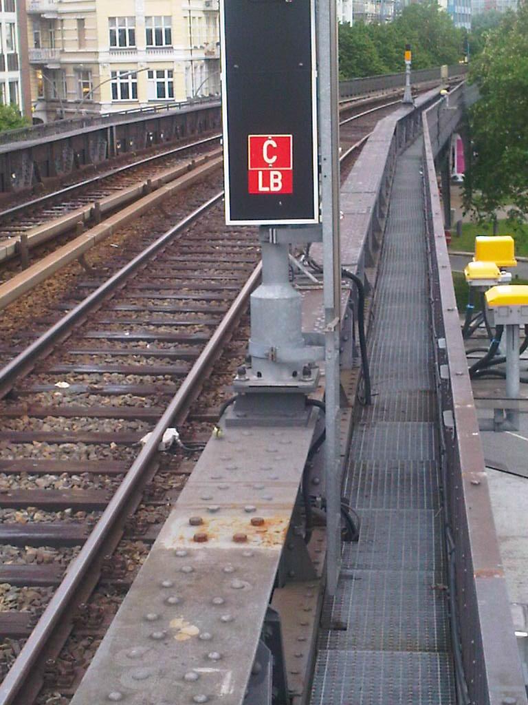 Junge Meise auf der Linie U3 Landungsbrücken