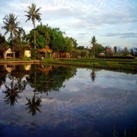 Desa Kertalangu