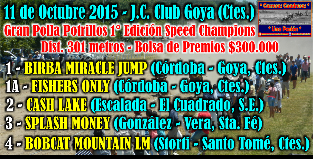 GOYA - SPEED CHAMPIONS - 301