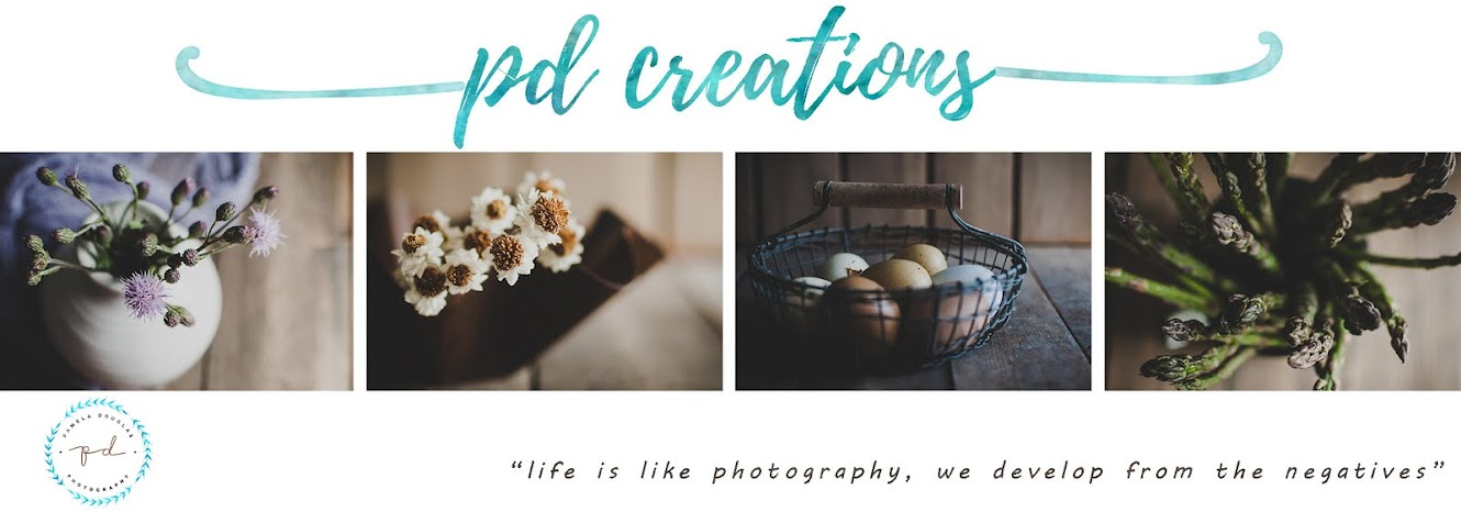 PD Creations Photography