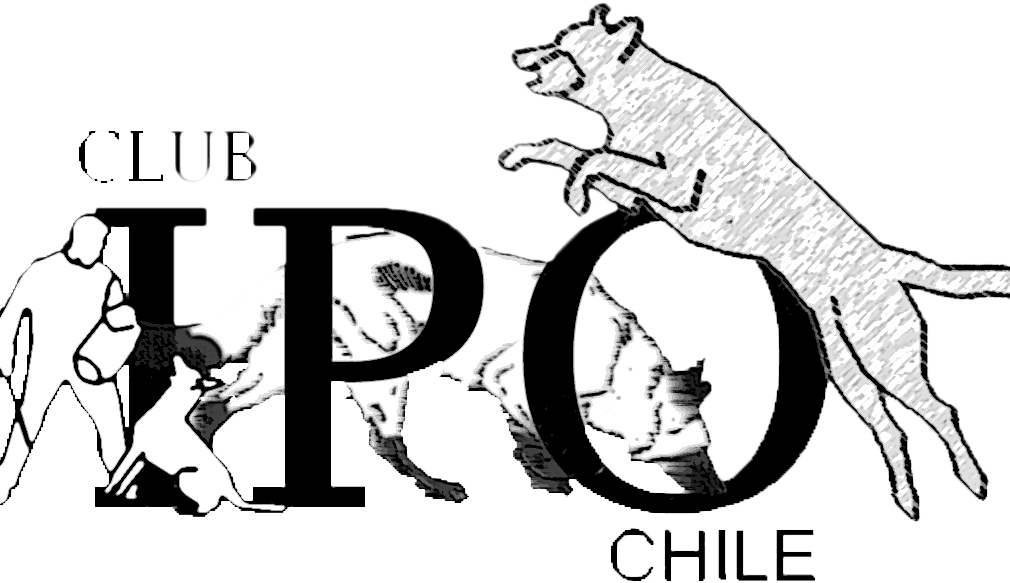 IPO Adiestramiento Kennel Club de Chile - Chilcoa