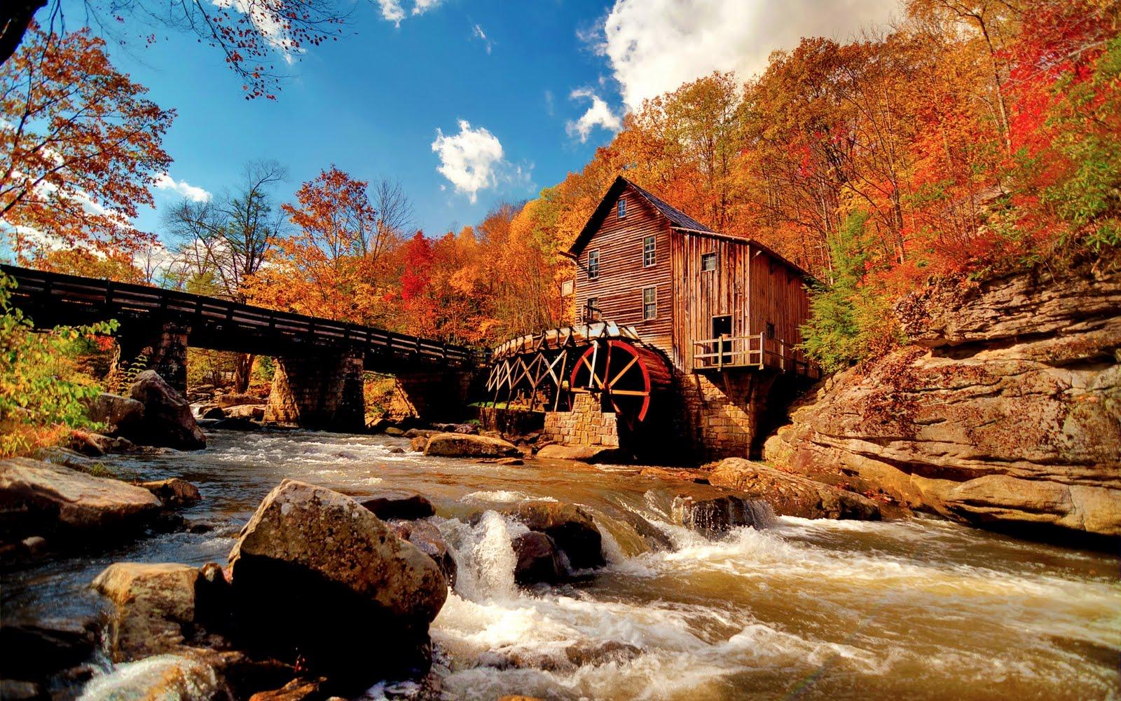 http://1.bp.blogspot.com/-0CgQon34mYI/TtLuxuMK5qI/AAAAAAAArk8/fVCEpAm-dgQ/s1600/autumn-forest-landscape-1920x1200-wallpaper.jpg