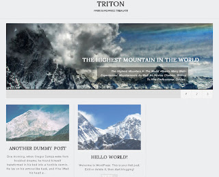 WordPress-Template Triton Lite