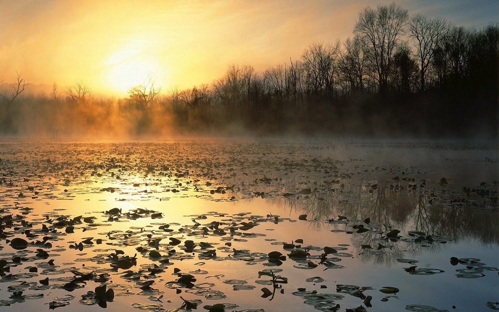 http://1.bp.blogspot.com/-0CnpqI-N3V8/TtxJHbj1QEI/AAAAAAAAAnw/o3ejFwalTxU/s1600/lake-wallpaper-hd-4-785415.jpg