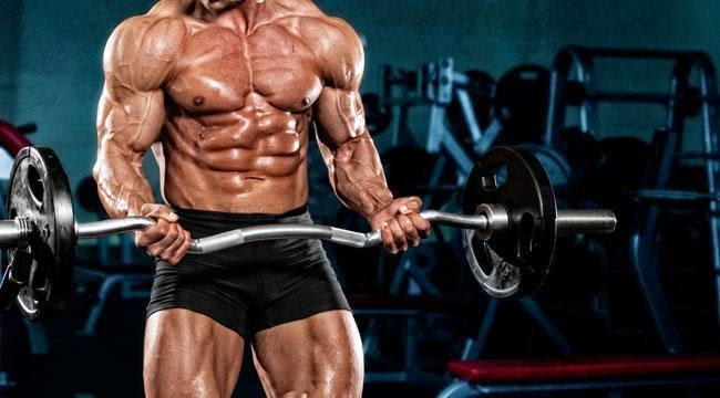 Visual Impact Muscle Building Scam