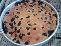 Clafouti- blueberry