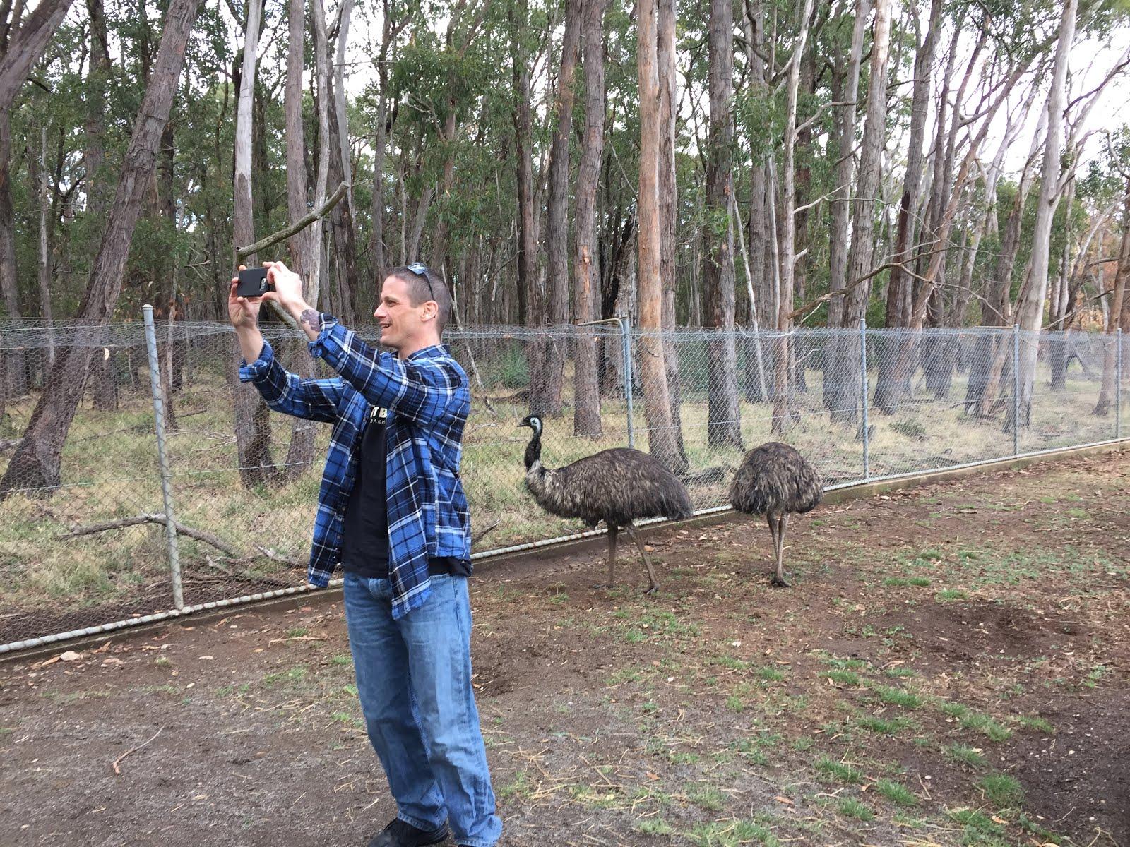 Uncle Drew's emu selfie