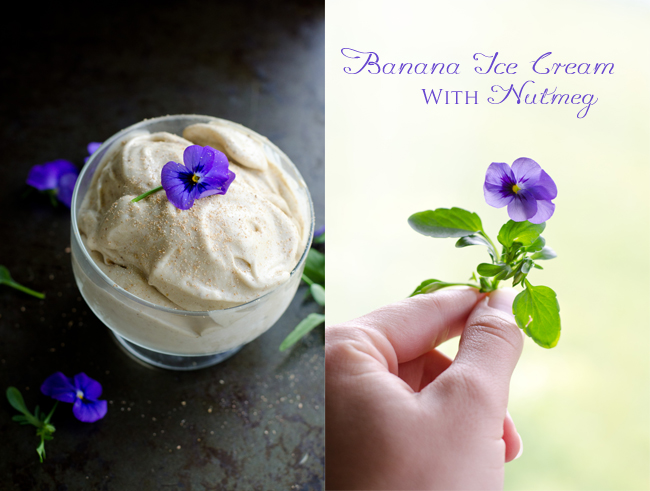 Sweet Roots {Infusions of Herbal Living}: Banana Ice Cream ...