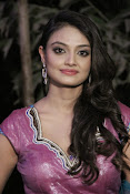 Nikita Narayan Photos at Tanu Monne Vellipoindi Audio-thumbnail-2