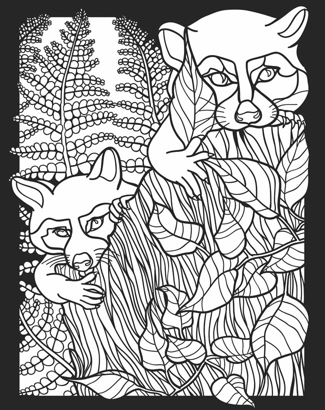 nocturnal animals coloring pages - photo#9