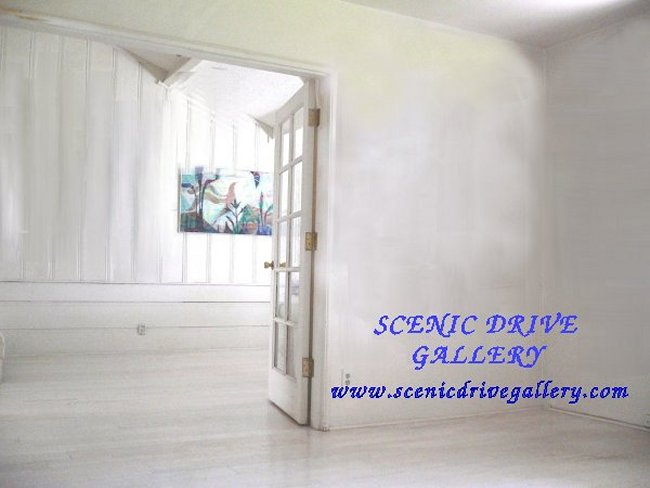 Collections at Scenic Drive Gallery