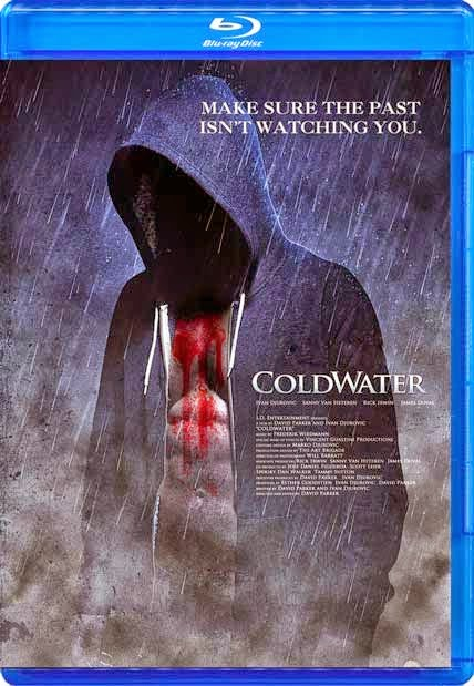 Coldwater 2013 BluRay 300mb 480p ESub