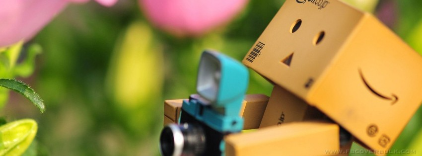 Danbo Bee Facebook Timeline Cover