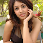 Richa Gangopadhyay Showcasing Her Sexy Thighs In a Black Short Dress