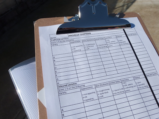The assessment sheet used for the tomato trials day
