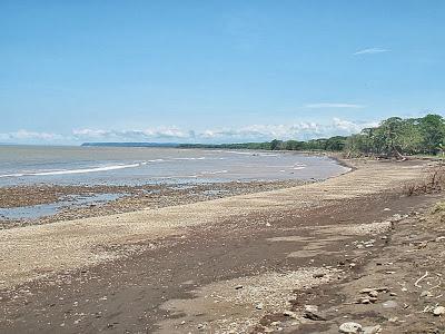 Playa Tárcoles, Puntarenas