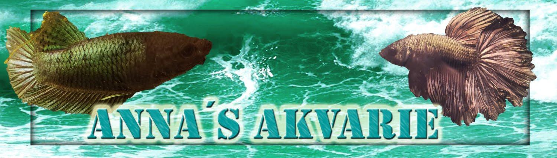 Anna´s Akvarie