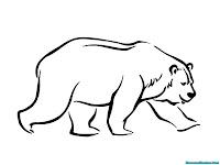 Buku Mewarnai Gratis Gambar Beruang
