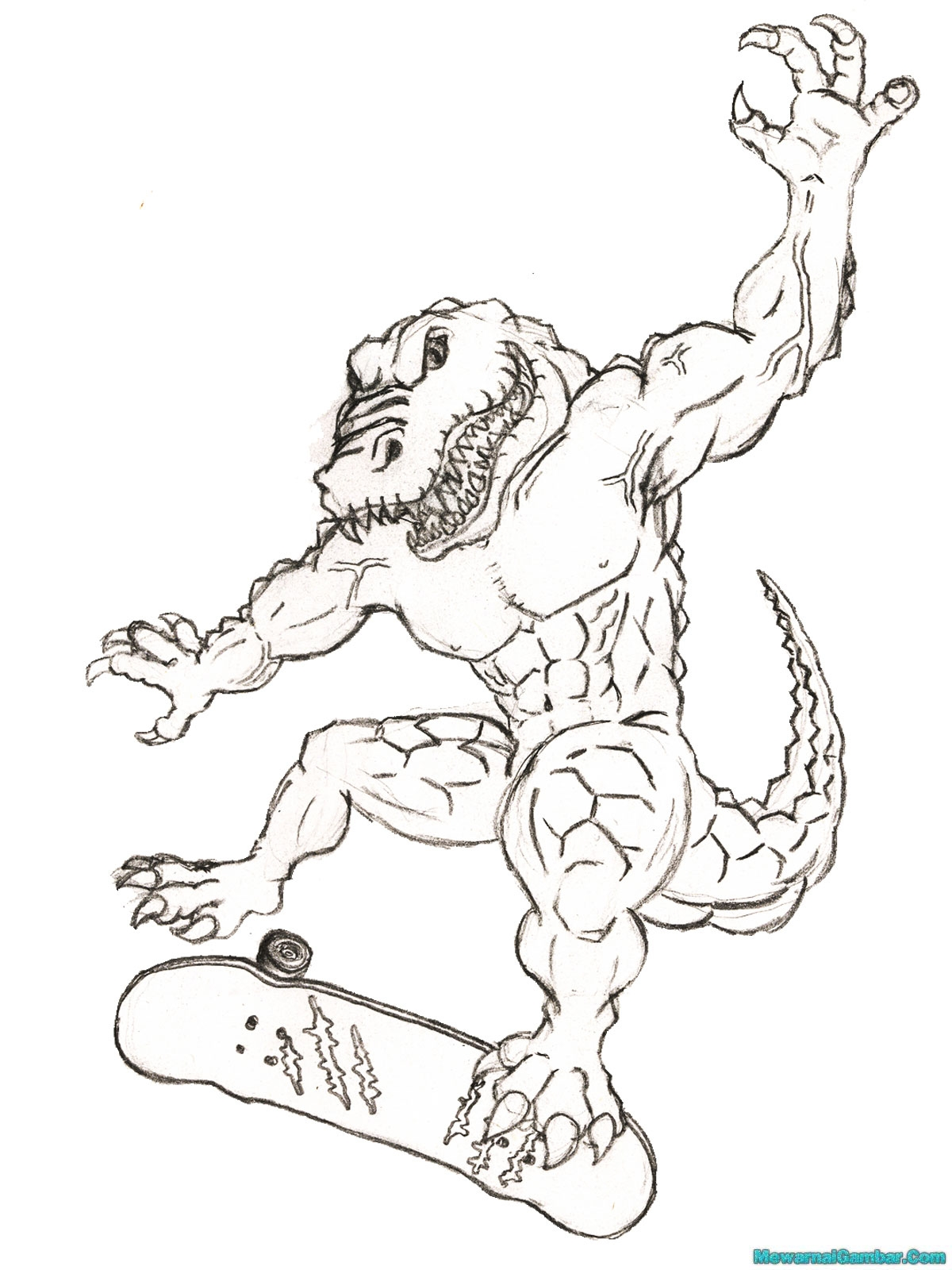 Free Of The Florida Gators Coloring Pages Florida Gator Coloring Pages