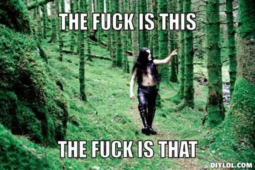 black-metal-forest-meme-generator-the-fuck-is-this-the-fuck-is-that-b2b00e.jpg