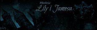 http://mlodosc-lily-i-jamesa.blogspot.com/
