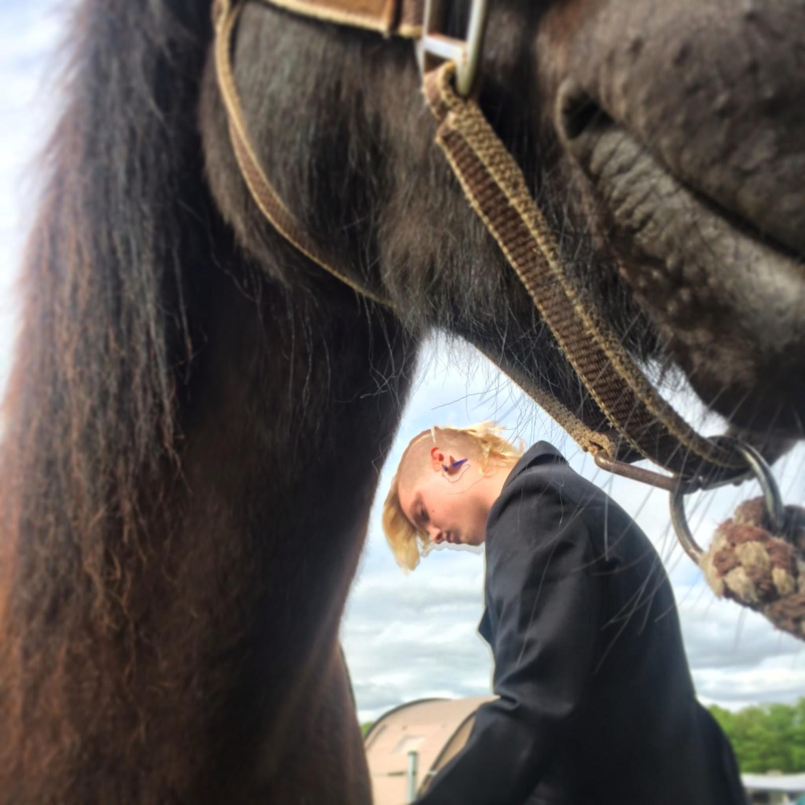 Secundus und sein Pferd