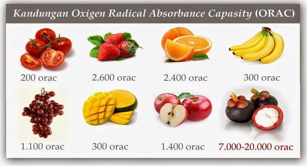 Kulit Manggis, Manfaat Kulit Manggis, Kegunaan Kulit Manggis, Kandungan Kulit Manggis