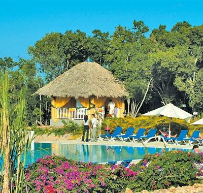 Home designs garden a spiritual haven of stunning nature for Haven home and garden design