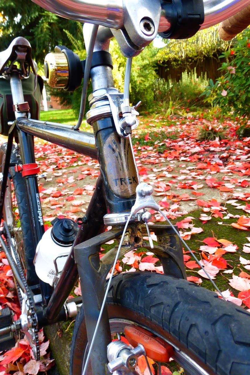 B-Stone, Eugene, Oregon, single speed, autumn, fall, red maple leaves,
