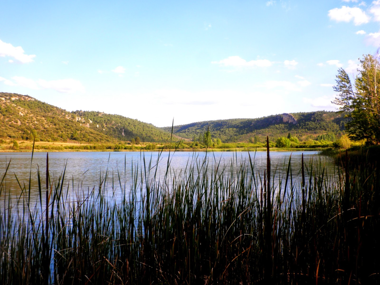 laguna Grande del Tobar