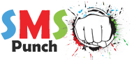 SMSPunch: SMS Collection, Send SMS to Pakistan