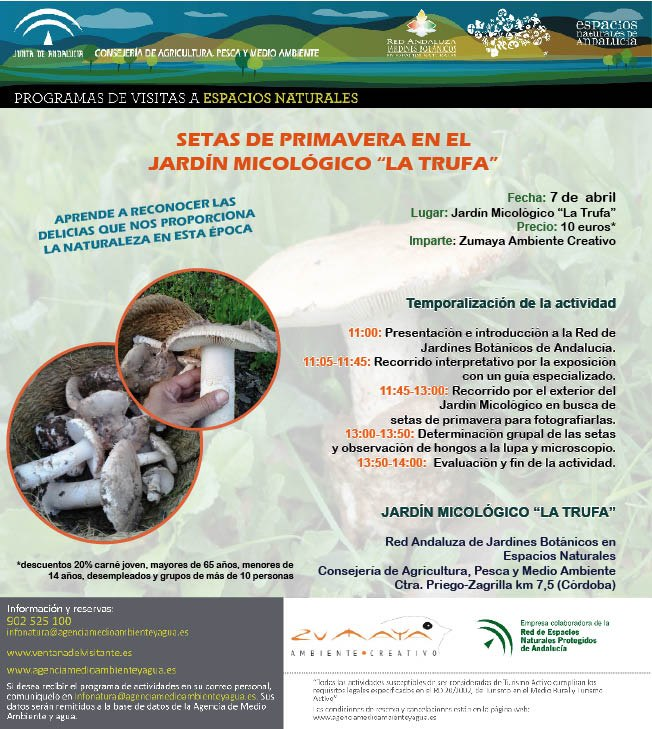 Tubal 7 abril setas de primavera en el jard n micol gico for Jardin micologico la trufa